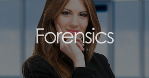 Forensic Accounting in New York City, New York County NY, Raleigh NC